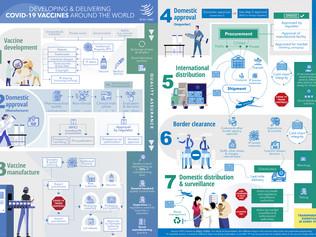 WTO เผยแพร่ Infographic แนวปฏิบัติที่ดีในการพัฒนาจนถึงการส่งมอบวัคซีนโควิด-19