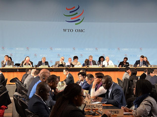 WTO ช่วยขับเคลื่อนระบบการค้าโลกอย่างไรบ้าง?