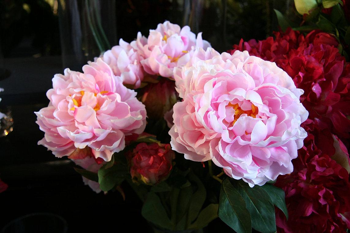 jpc import export grossiste fleurs et plantes artificielles. Black Bedroom Furniture Sets. Home Design Ideas