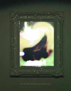 Fiction-objet _Portrait_Mixed media, Sensor  Variable size2010