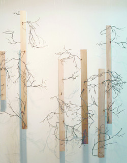 Fiction-objet 09_Branches II_2009