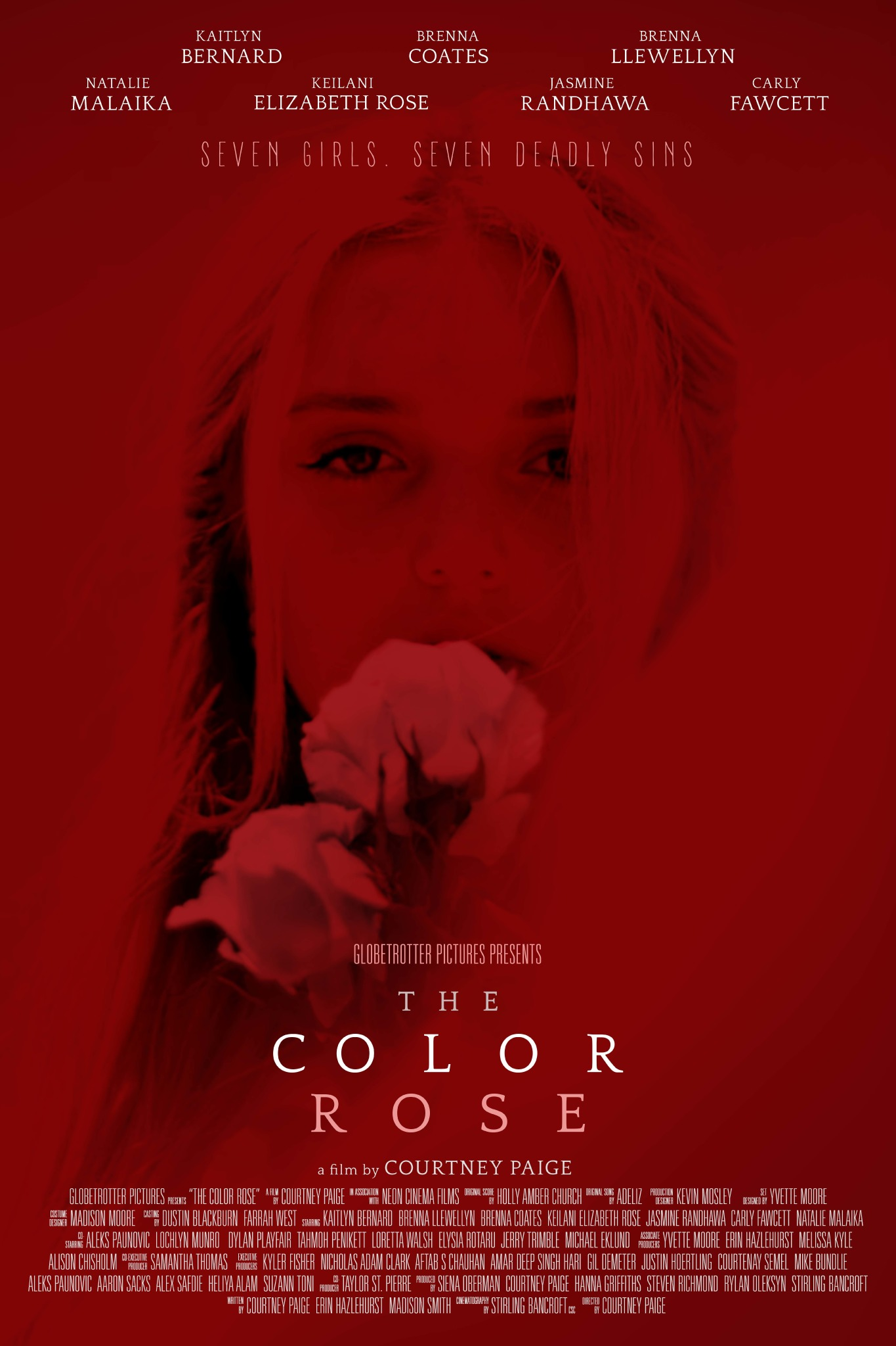 COLOR ROSE RED POSTER