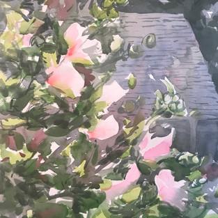 Rose of Sharon, artist Nancy DuVergne Smith