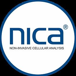 nica Logo_weißer Hintergrund.png