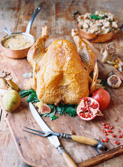 thanksgiving-tranquility-farm_144