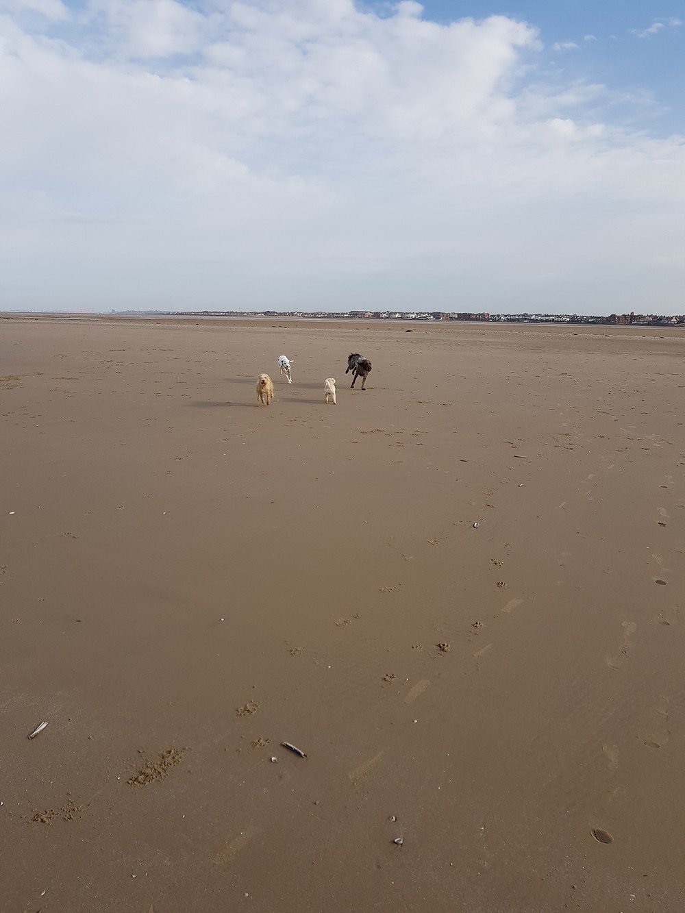What a fabulous beach walk at Hoylake!!!