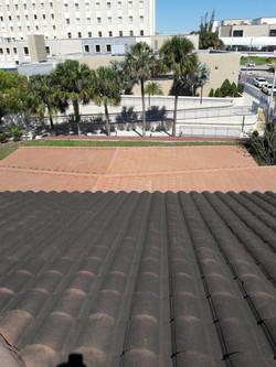 Massive 15,000 sqft roof cleaning Tampabaypressurewashingservice.com