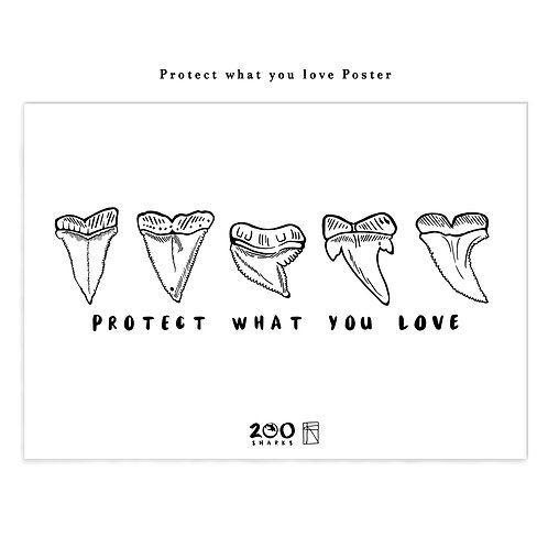 'Protect what you love'