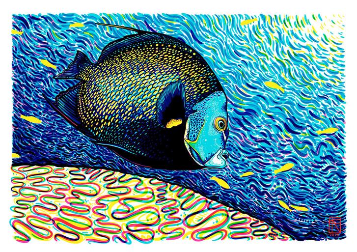 Calypso by Francesca Page