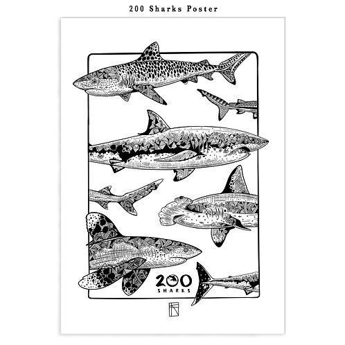 '200 Sharks'