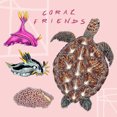 Coral Friends Sticker Pack