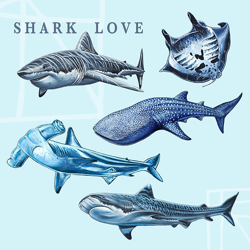 Shark Love Sticker Pack