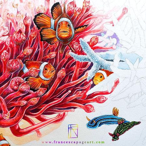 Reef Stories Progress shot