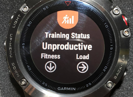 Trust the Training, Not the Watch