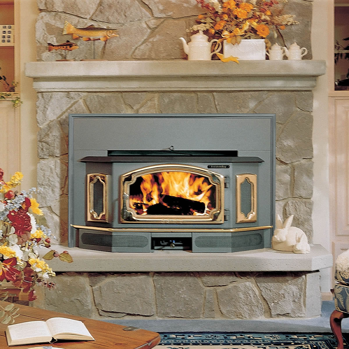 Freedom Bay Wood Stove Insert - Home Fire Stove, Salem Oregon