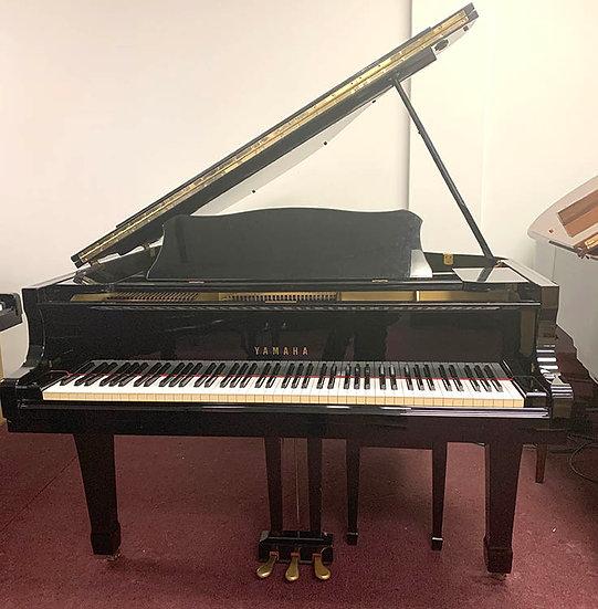 YamahaG1 Grand Piano
