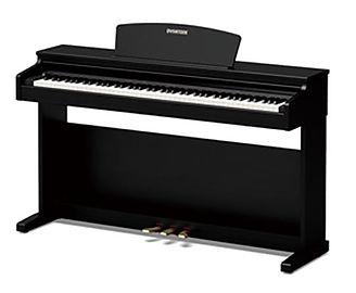 DynaSLP250H-piano-longisland.jpg