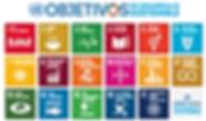objetivos de desarrollo onu.png