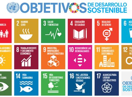 Los Objetivos de Desarrollo Sostenible, prioridad para un currículo STEM (primera entrega)