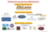 2020 dodgeball sponsors.png