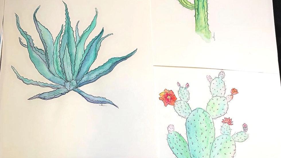 Set of 3 Cacti