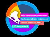 Финал межмуниципальных соревнований Чел-ой области по фигурному катанию на коньках