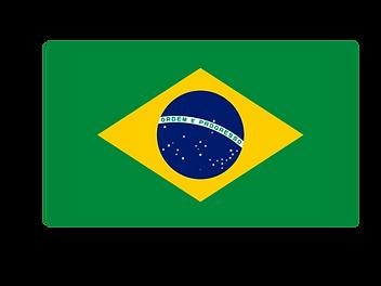 bandeira-horizontal.png