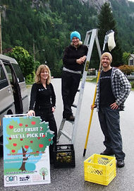 Fruit Tree Project 01.jpg