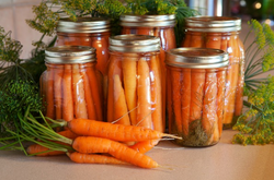 Food Education Series - Canning