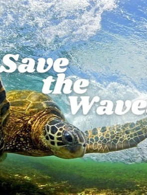 Save the Waves.org