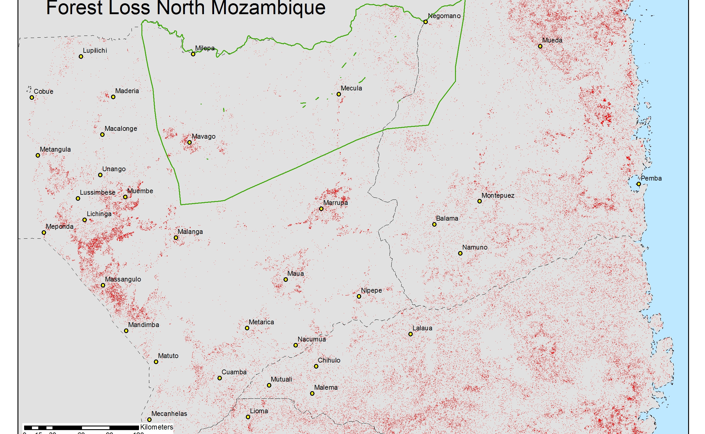 1b forest loss region