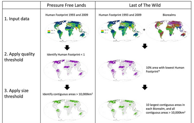 Temporally inter-comparable maps of terrestrial wilderness and the Last of the Wild