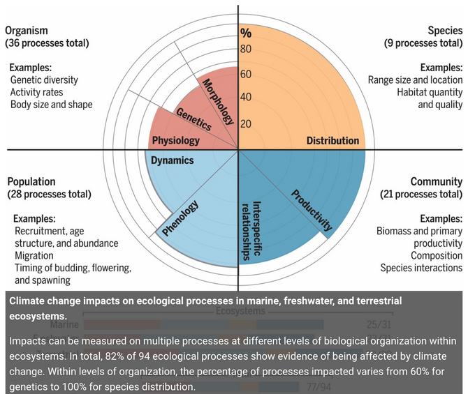 The broad footprint of climate change from genes to biomes to people