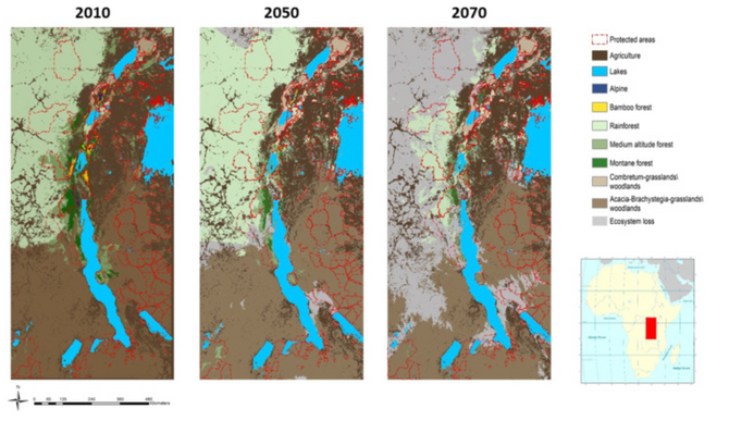 Forecasting ecosystem responses to climate change across Africa's Albertine Rift
