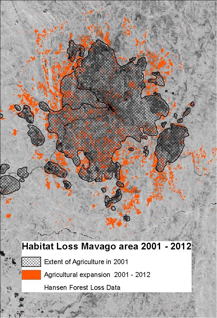 additive loss Mavago