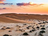 Namibia Dunes 852.jpg