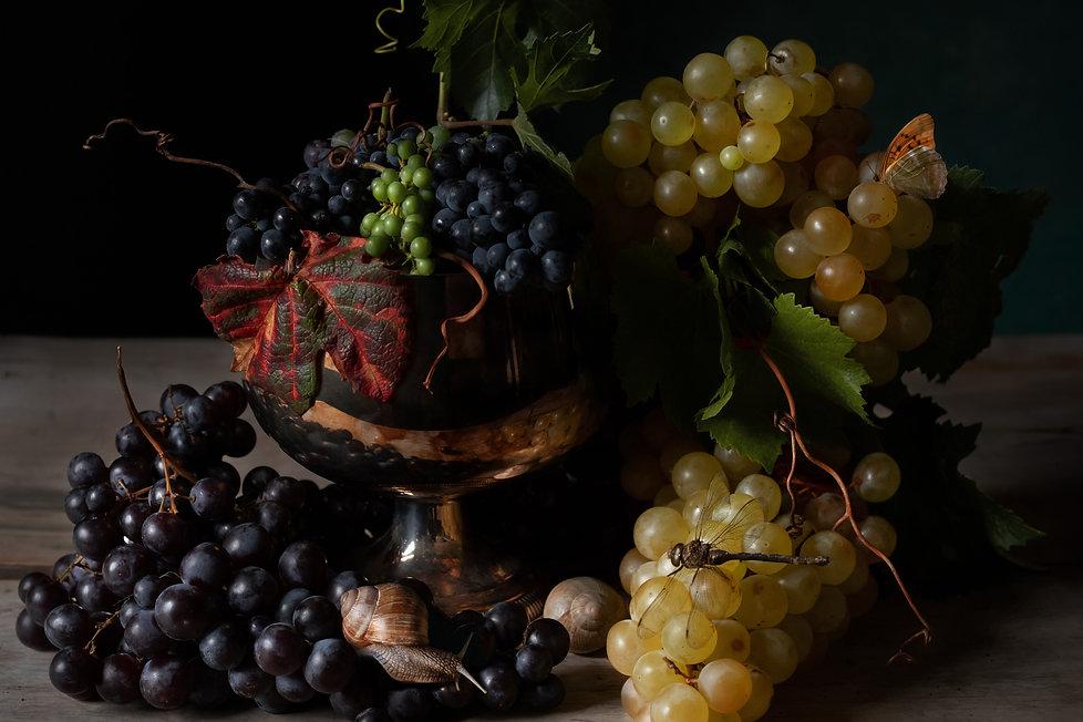 grape libelule site.jpg