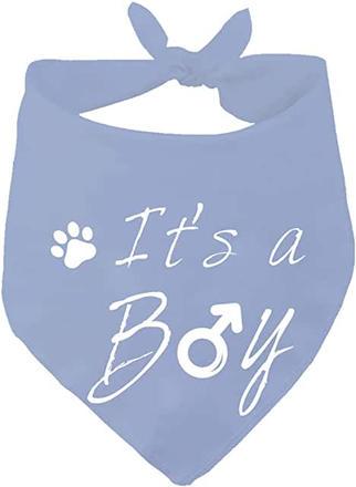 It's a boy dog scarf