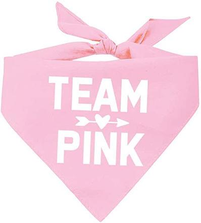 Team Pink dog bandana