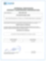Air Service Basel Bermuda DCA approval