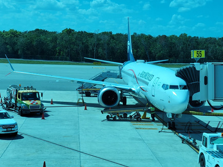 Aeromexico B737-800, B737 MAX & B787 Domestic Business Class (Clase Premier) Review