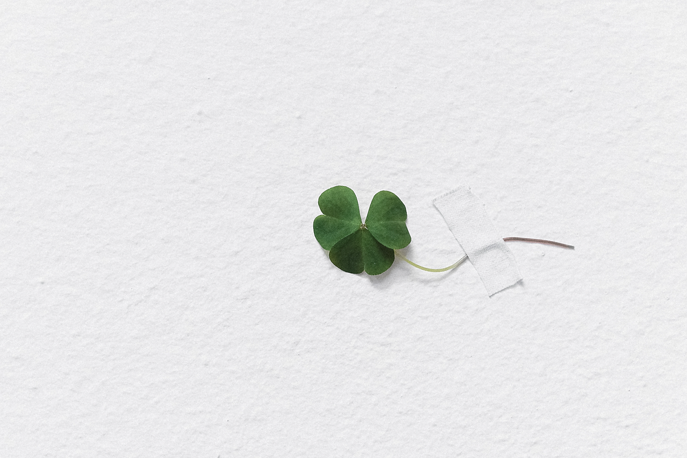 Green shamrock taped to a white paper
