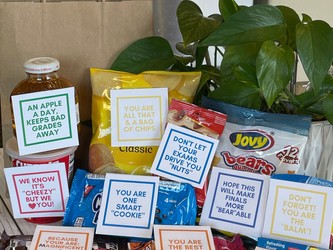 Create DIY Finals Survival Kits for the Student in Your Life to Show Your Encouragement & Support