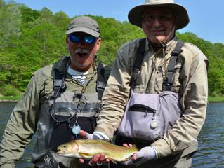 Upper Delaware Fly Fishign Report
