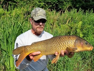 Fishing Report for the Upper Delaware River and Catskill Region