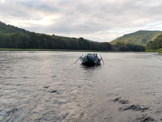Fly Fishing Report for the Upper Delaware River and Catskill Streams