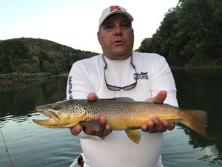 Weekend Outlook for Fly Fishing the Upper Delaware and Catskill Rivers