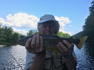 Fly Fishing Report for the Upper Delaware and Catskill Rivers
