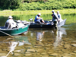 Upper Delaware and Catskill Fishing Report