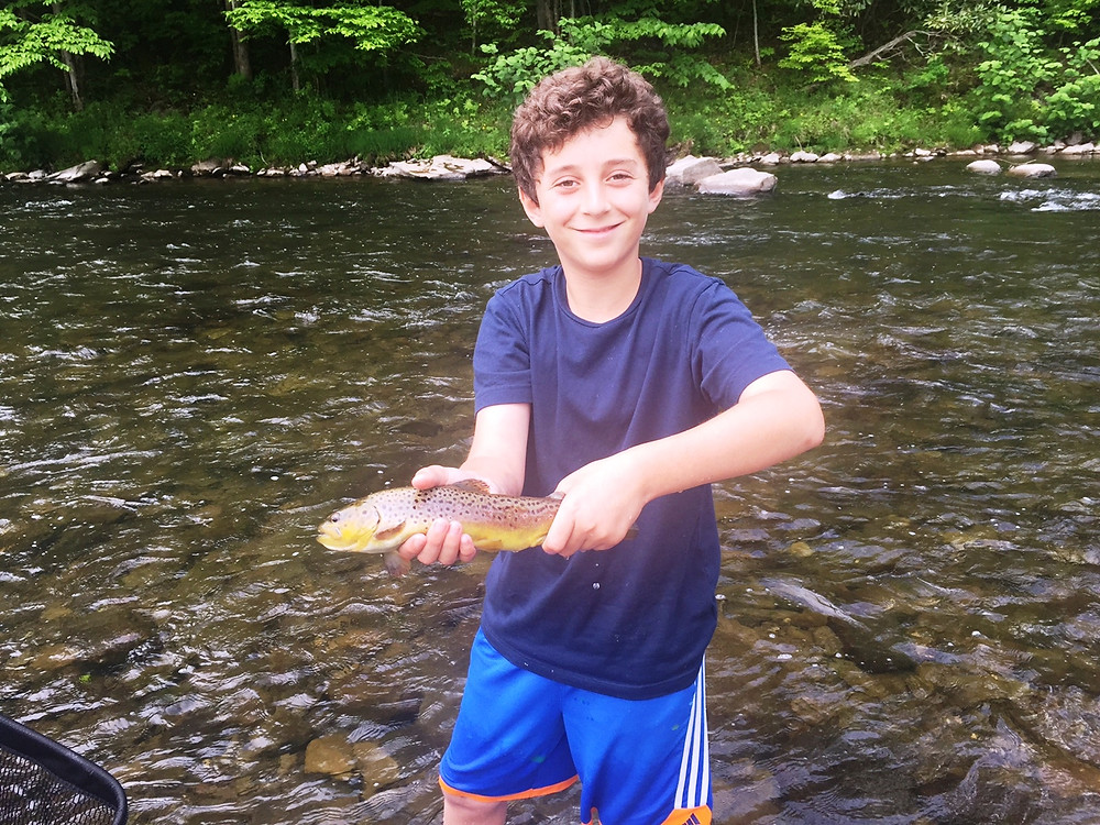 Willowemoc Brown trout